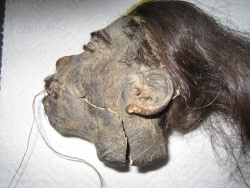 Shrunken Head Www Leather Dictionary Com The Leather Dictionary